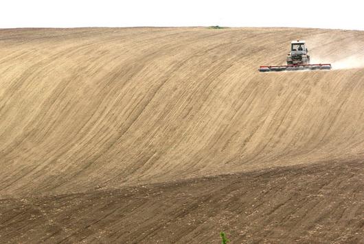 2198486-traktor-na-poli-ilustracni-foto.jpg